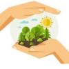 Positive Impacts of Coronavirus on the Environment