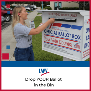 Save Vote by Mail