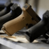 Preventing Gun Deaths and Injuries